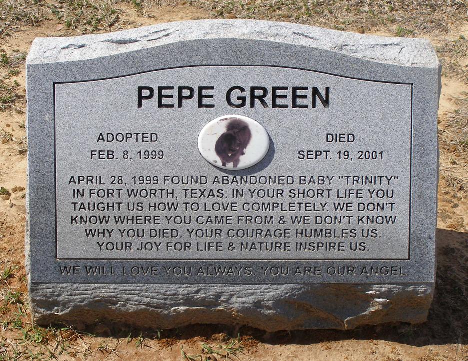 Texas Pet Cemeteries Roadsidearchitecture Com